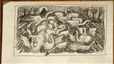 Twelve Swans by John Slavin, Drawing